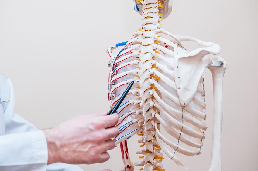 Ein Heilpraktiker aus Pforzheim zeigt auf die Wirbelsäule eines Skelett-Modells.